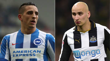 brighton & hove albion v newcastle united