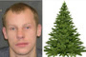 jail for thieves who stole a christmas tree from asda and cash...