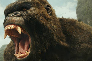 'kong: skull island' review: all-star monster movie satisfies without surprising