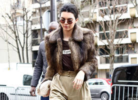 kendall jenner sparks plastic surgery speculation