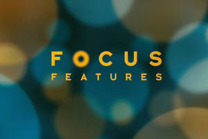 dani weinstein hired as focus features new evp of publicity