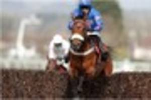 """paddy brennan on cue card in the gold cup: """"i made a mistake..."""