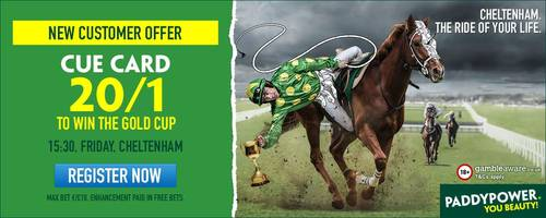 Cheltenham Gold Cup 2017: Get Cue Card to win at 20/1 enhanced odds