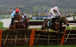 walsh and mullins double act lands four cheltenham winners