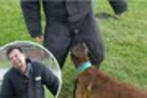 Ouch! Police dog trainer risks his all for the job