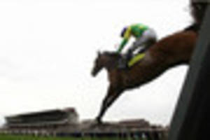 Why Notts firm Timico has biggest stake of all in the Cheltenham...