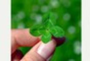 happy st patrick's day! find out what it is, who st patrick was...