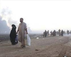 Death carts carry family ripped apart by Mosul campaign