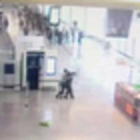 CCTV footage shows moment Islamic extremist grabs female soldier during Paris airport standoff