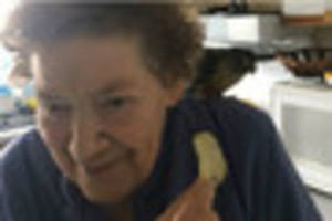 How a video message reunited an Exeter pensioner with her lost...