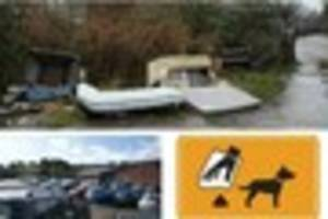 Dog fouling, grammar schools and O'Neill's pub to be debated at...