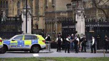 Police reportedly shoot man near House of Commons in London