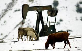 Crude oil prices are dropping as the US adds to its stockpiles