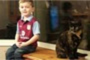 winshill family reunited with 'bagpuss' who was left dumped in a...