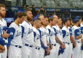 Crowd-funding campaign launched for Beit Shemesh baseball complex