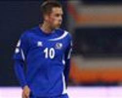 watch out, europe! iceland is building on euro 2016 success, says sigurdsson