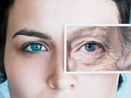 the anti-ageing compound