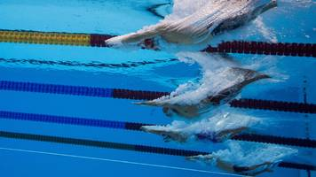 british swimming: bullying claims by paralympians are investigated