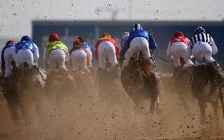 horse racing betting: cowboy looks a cool customer in the golden shaheen