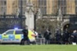 Westminster terror attack: Pupils from St Minver School in...