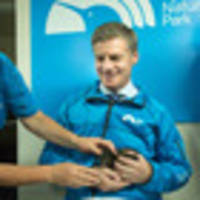 Prime Minister Bill English cradles Kiwi chick during Rainbow Springs visit
