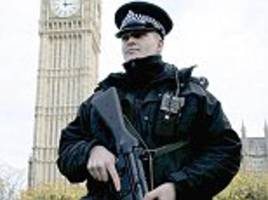 MPs complained about armed police at Parliament gates
