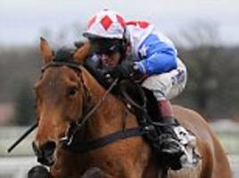 Reve De Sivola died after Edinburgh Gin Handicap Hurdle