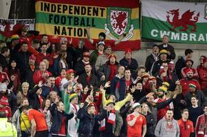 will wales get to the world cup? we crunch the numbers... and it could come down to last day cardiff drama against ireland