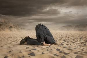 the market has its head buried deep in the sand