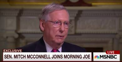 Mitch McConnell: Obamacare 'Status Quo' Will Remain, Democrats 'Ought to be Pretty Happy'
