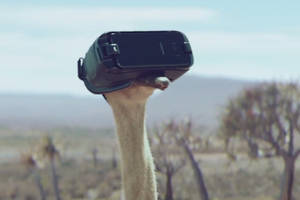 Samsung is now selling virtual reality using an ostrich in a Gear VR