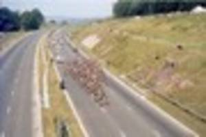 the day the tour de france was held on the plympton bypass