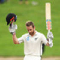 cricket: williamson rated among greats by gracious opponents