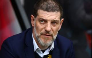 bilic dismisses job fears and focuses on halting slump
