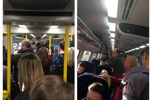 scotrail finally come clean over scale of overcrowding on trains after sunday mail campaign