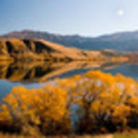 queenstown: fall into paradise