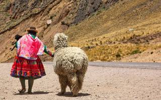 alpaca your bags and jet off to peru, the most varied country on earth