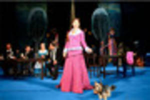 dog wanted to star on stage in opera at devon theatre
