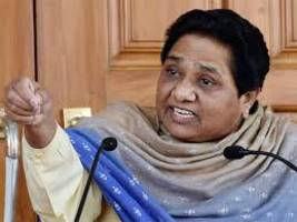 mayawati appoints brother anand kumar as bsp vice-president