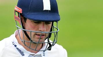 somerset v essex: alastair cook unbeaten as visitors chase 255 for victory