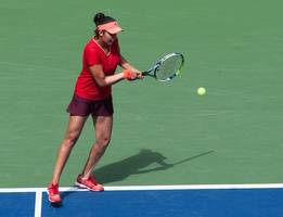 it's been a solid year, hope to build on it: sania mirza
