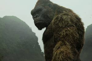 following kong: skull island, a tv show called king kong skull island