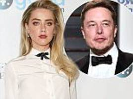 amber heard 'planning to wed elon musk'