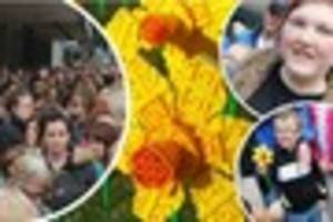 Hull's Lego daffodils sell out in two hours as hundreds queue to...