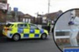 Shock as man, 24, suffers 'serious head injuries' and another is...