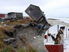 remote alaskan island is a poster child for global warming