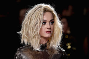 katy perry transforms into guy fieri, declares 'never getting laid day' (photo)