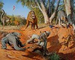 megafaunal extinctions driven by too much moisture