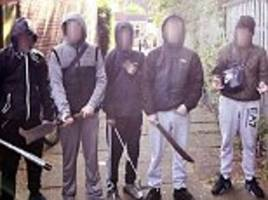photo shows 'baby-faced' gang of youths in birmingham