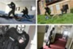 the zombies are coming! pictures of players hunting down living...